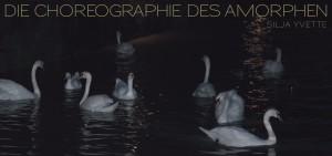 Flyer_Die_Choreographie_des_Amorphen-1